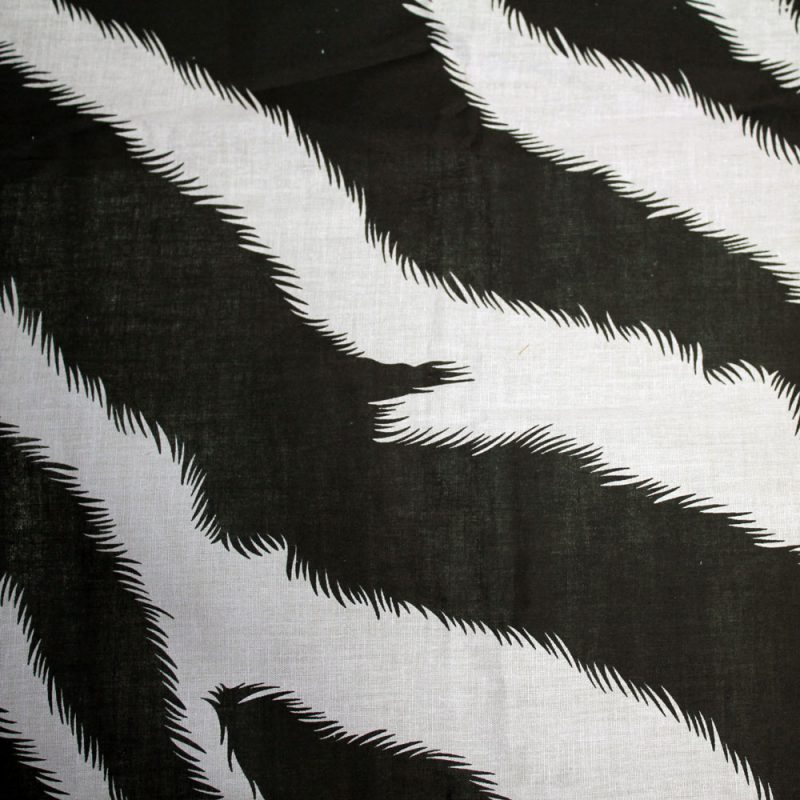 Zebra-striped-Kanga-3