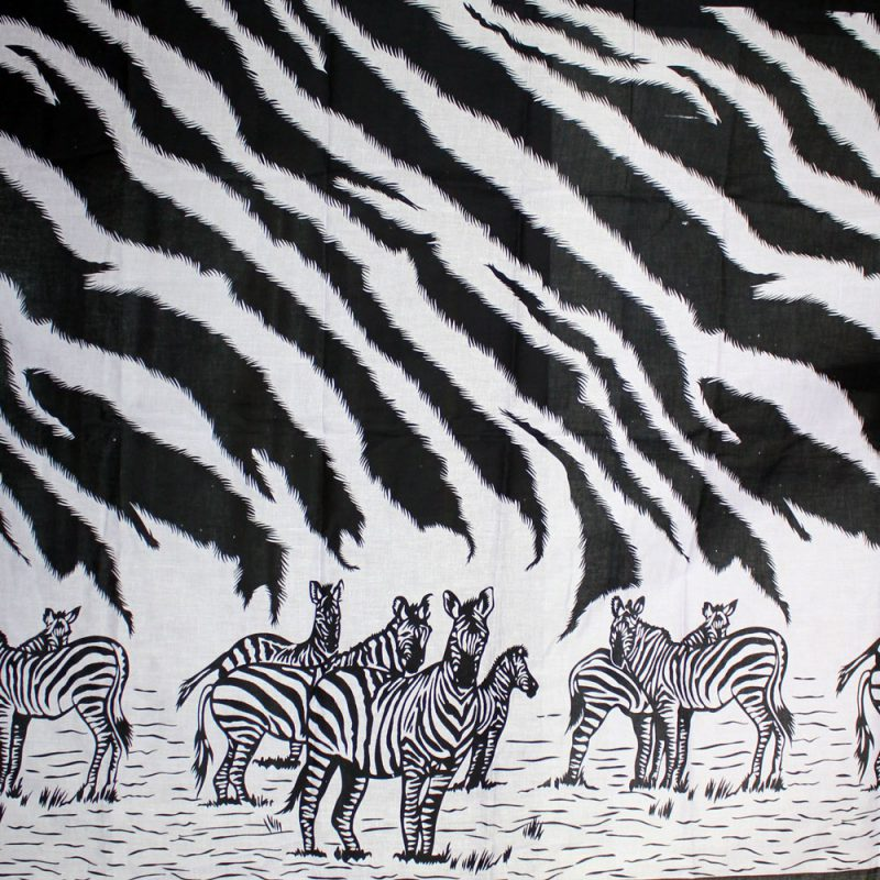 Zebra-striped-Kanga-4